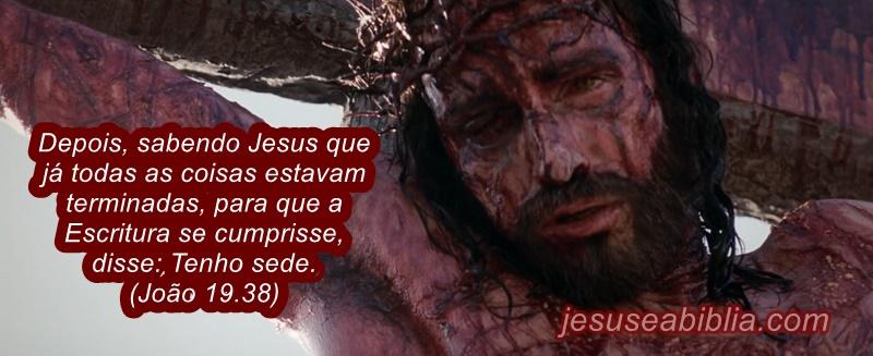 Jesus na Cruz Declara que está com Sede