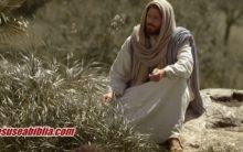Parábola de Lázaro e o Rico Explicação: Outro Lado da Morte!