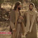 Parábola do Juiz Iníquo: 5 Motivos Para Orar Sempre
